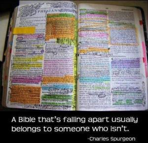 well-read-bible1