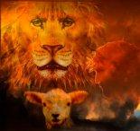 LionCrnLmb