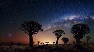 stars in desert sky