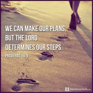 31471-plans-steps-proverbs16-9.png