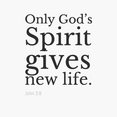 spirit gives life