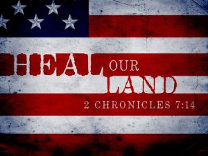 heal-our-land-flag